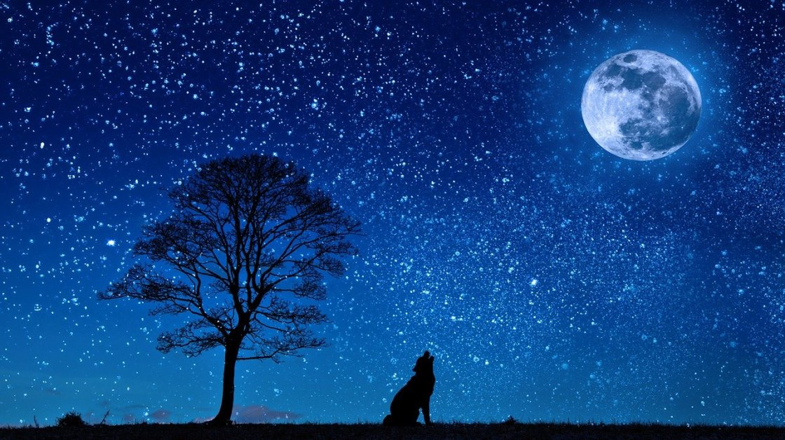 When the moon is your story joti heir